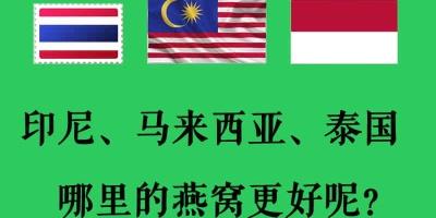 【燕窝哪里的好】马来西亚燕窝、印尼燕窝和泰国燕窝到底哪里的好?为什么?