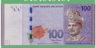 【马来西亚币】现金买燕窝?马来西亚的钱都长成什么样子的?
