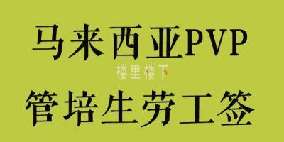 有一种马来西亚工作签证叫PVP劳工签,通常最高可以持续一年