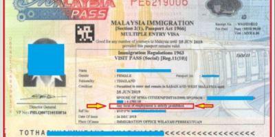 马来西亚担保签证之老公是马来西亚公民的情况