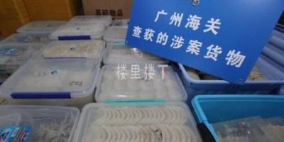 燕窝新闻:走私燕窝约19吨!广州海关破获亿元走私燕窝大案