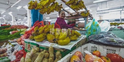 马来西亚最新疫情下物价情况,看看大家购买力是否下降了