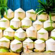 【悬赏RM2000】寻找泰国香椰保鲜防霉保存解决方案