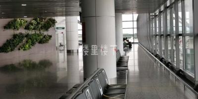 疫情之下十月上旬的吉隆坡机场KLIA冷清可怕的紧呐
